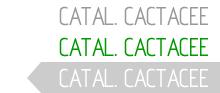 Catalogo Cactacee